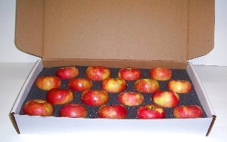 18 COUNT SINGLE LAYER HONEYCRISP GIFT BOX